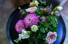 お花のプレゼント|季節を代表する花と珍しい花を組み合わせるのが「ex.」のスタイル|フラワーギフト
